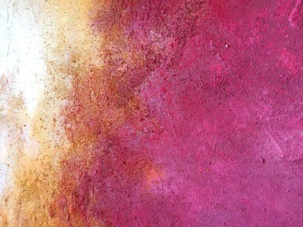 PICTOCLUB Painting - HIBISCO - María Romero