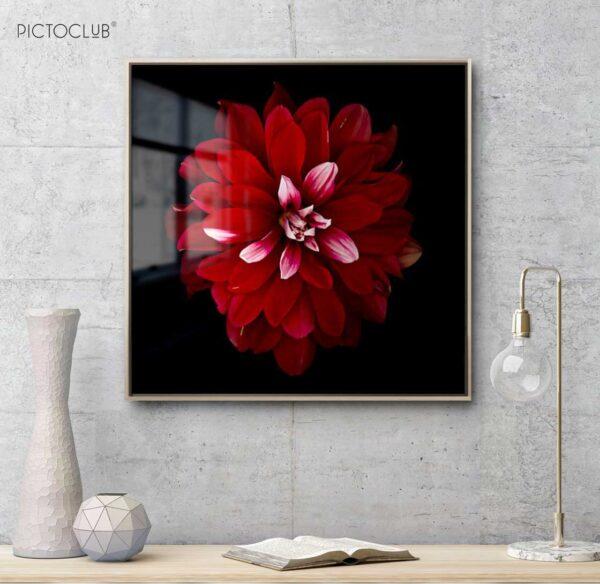 PICTOCLUB Painting - RED FLOWER 2 - Pictoclub Originals