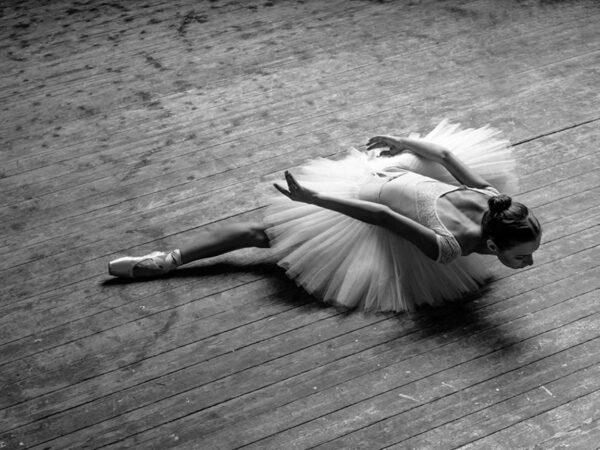 PICTOCLUB Photographs - SWAN DANCER - Pictoclub Originals